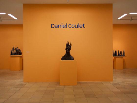 daniel-coulet-ludwig-museum-1