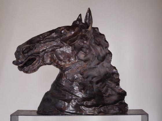 Tete et encolure N2-bronze58x60x30cm